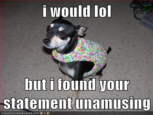 chihuahua,clothes,clothing,lol,no lols,not funny,sweater