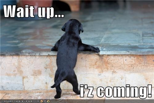 Wait up...  i'z coming!