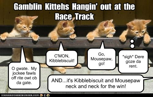 Gamblin  Kittehs  Hangin'  out  at  the  Race  Track