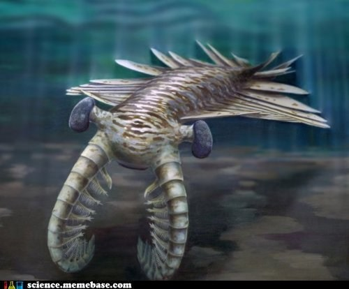 Anomalocaris, The Harbinger of Nightmares
