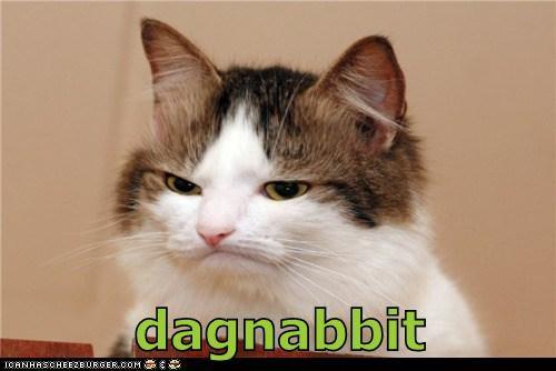 dagnabbit