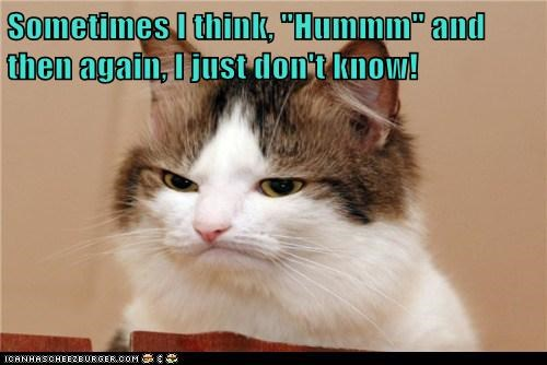 """Sometimes I think, """"Hummm"""" and then again, I just don't know!"""