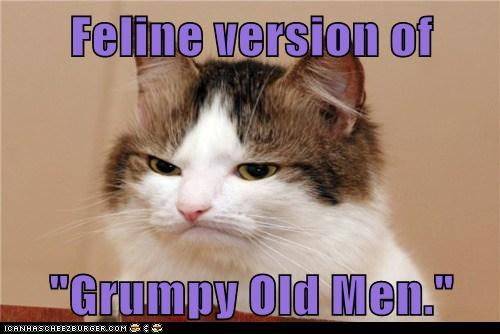 caption,captioned,cat,feline,grumpy,Grumpy Old Men,men,Movie,old,version