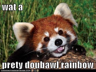 adorbz,cute,double rainbow,happy,red panda,smiling