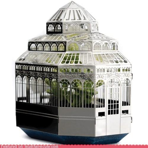 Desktop Botanical Garden