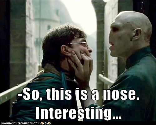 Daniel Radcliffe,harry,Harry Potter,interesting,nose,ralph fiennes,voldemort