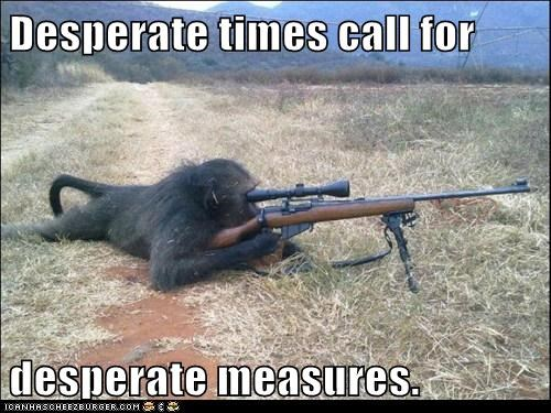 ape,desperate times call for desperate measures,gun,primate,primates,rifle,scope,sniper rifle,weapon