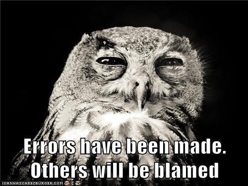 animals,blame,errors,i blame you,Owl