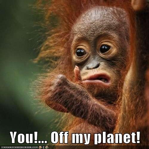 animals,get off,get out of here,go away,off my planet,orangutan