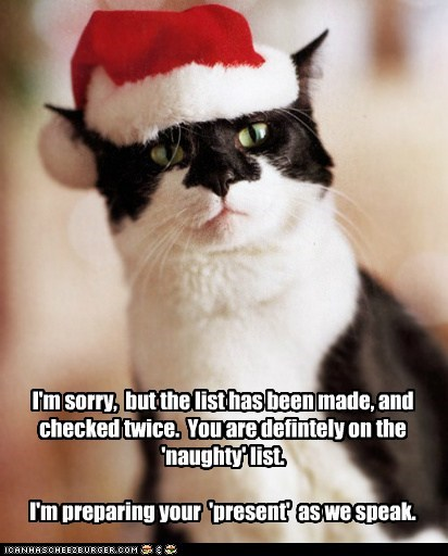 bad,cat,chirstmas,I Can Has Cheezburger,naughty,naughty list,no presents for you this year,santa,santa hat