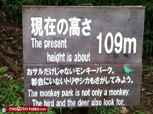 Well then why even bother calling it a monkey park