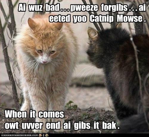 Ai  wuz  bad . . . pweeze  forgibs . . . ai  eeted  yoo  Catnip  Mowse .