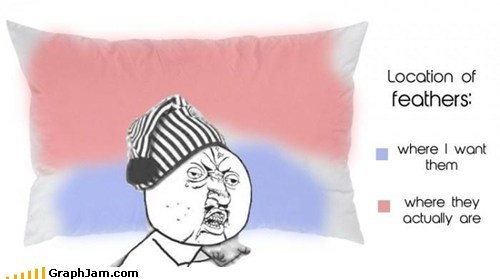 bed,feathers,First World Problems,Pillow,Y U NO