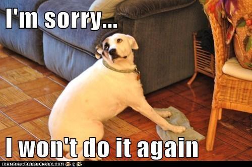 I'm sorry...  I won't do it again