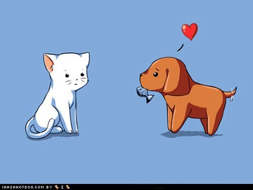 cartoons,cat,crush,crush on you,gift,heart,kitten,love,present,puppy
