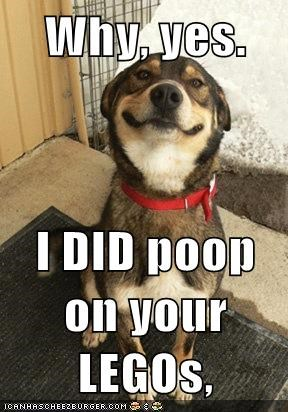 Why, yes.  I DID poop on your LEGOs,