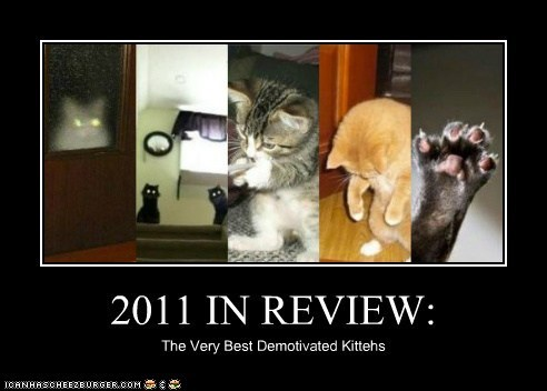 2011 in Review: The Very Best Demotivated Kittehs
