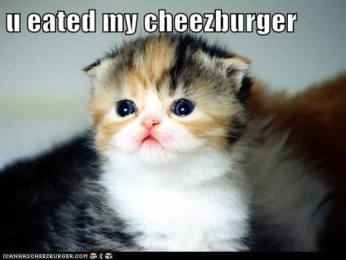 u eated my cheezburger