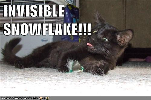 INVISIBLE SNOWFLAKE!!!