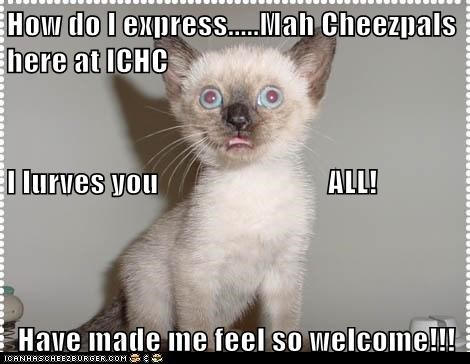 How do I express.....Mah Cheezpals                          here at ICHC I lurves you                            ALL! Have made me feel so welcome!!!