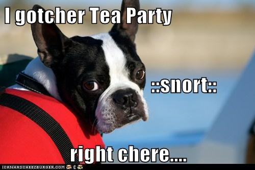 I gotcher Tea Party                            ::snort:: right chere....