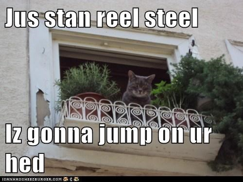 Jus stan reel steel  Iz gonna jump on ur hed