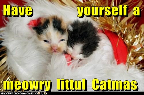 Have                yourself  a  meowry  littul  Catmas