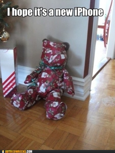 bear,Carousel-Xmas,christmas,gift,iphone,package,present,teddy bear