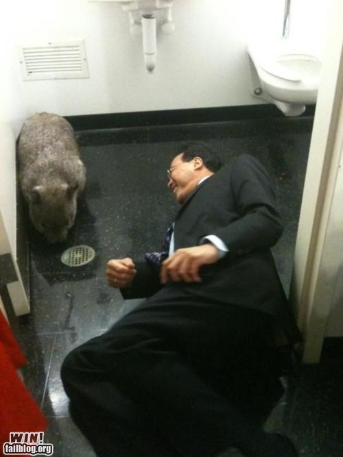 Yo-Yo Ma and a Wombat WIN