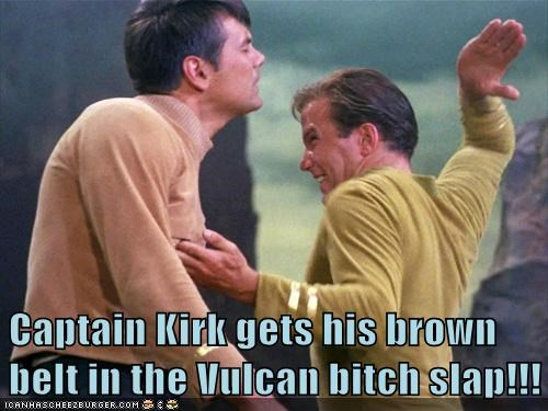 Captain Kirk gets his brown belt in the Vulcan bitch slap!!!