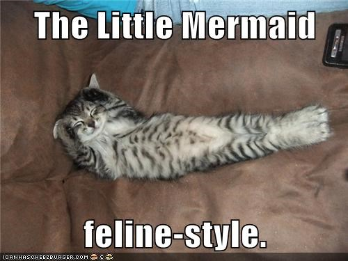 The Little Mermaid  feline-style.