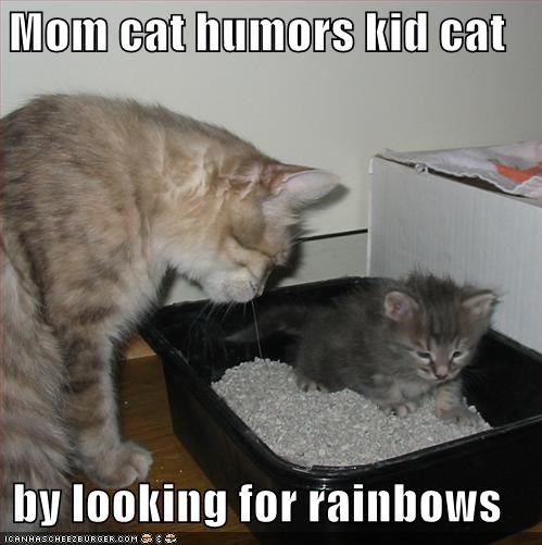 Mom cat humors kid cat  by looking for rainbows