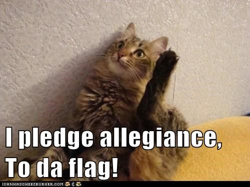I pledge allegiance, To da flag!