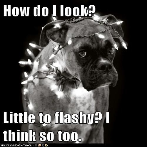 How do I look?  Little to flashy? I think so too.