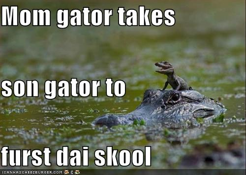 Mom gator takes son gator to furst dai skool