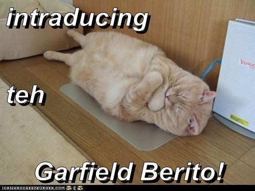 intraducing teh Garfield Berito!