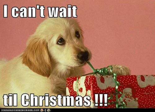I can't wait  til Christmas !!!