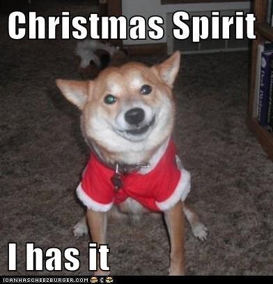 christmas,Christmas Spirit,santa,santa suit,shiba inu