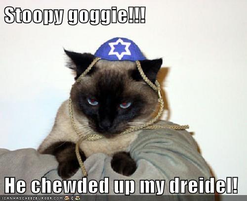 Stoopy goggie!!!  He chewded up my dreidel!