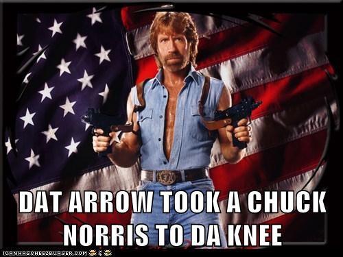 arrow,arrow to the knee,chuck norris,roflrazzi,Skyrim