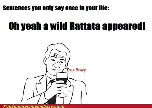 gameplay,once in your life,rattata,true story,wild rattata