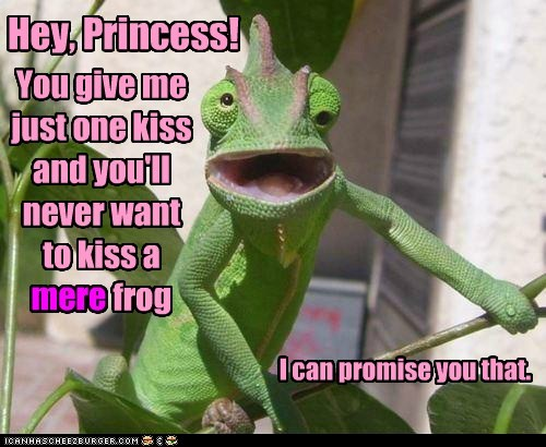 Hey, Princess!  You give me just one kiss and you'll never want to kiss a *mere* frog - I can promise you that.