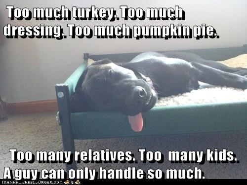 Too much turkey.
