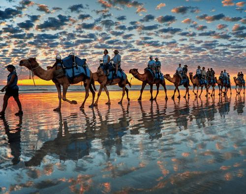 Camel Rides, Cable Beach, Australia