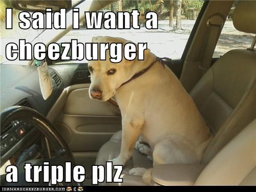 I said i want a cheezburger  a triple plz