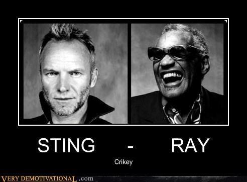 ray charles,Sad,steve irwin,sting