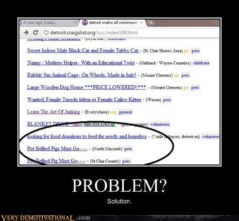 food,hilarious,pig,problem
