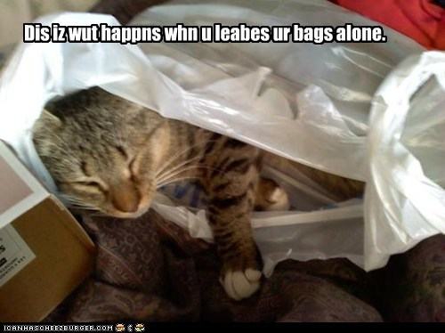 Dis iz wut happns whn u leabes ur bags alone.
