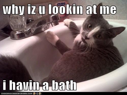 why iz u lookin at me  i havin a bath