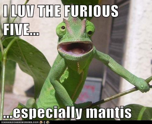 I LUV THE FURIOUS FIVE...  ...especially mantis